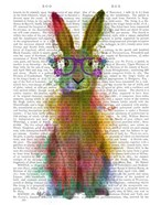 Rainbow Splash Rabbit 1