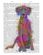 Rainbow Splash Weimaraner, Full