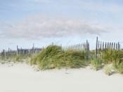 Beachscape IV