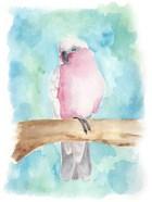 Sweet Tropical Bird III