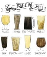 Beer Info Graphic
