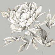 Botanical III