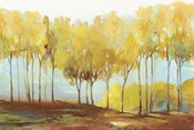 Yellow Trees