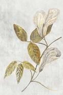 Botanical Gold on White III