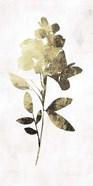 Gold Botanical I