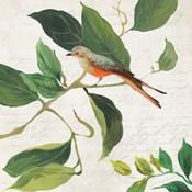 Singing Bird I