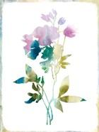 Summer Botanical II
