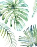Palm Leaf Variation
