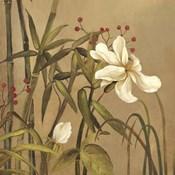 Bamboo Beuaty I
