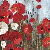 Passion Poppies I