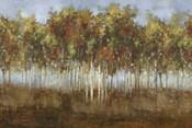 Dream Meadow II