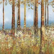 Field of Flowers  II