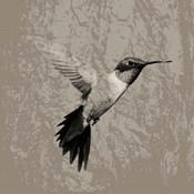 Feathered I