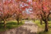 Undeterred Spring