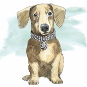 Glamour Pups IX