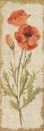 Poppy Panel on White Vintage