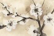 Spring Blossoms I Crop