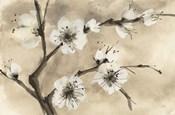 Spring Blossoms IV