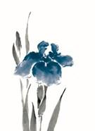 Japanese Iris III Crop Indigo