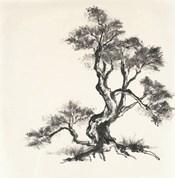 Sumi Tree I