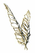 Gilded Raven Feather
