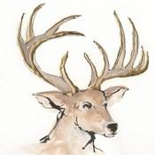 Gilded Mule Deer