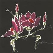 Magnolia on Black III