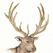 Gilded Elk