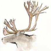 Gilded Caribou