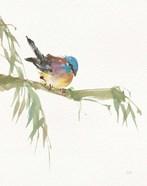 Finch v2