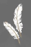 Gold Feathers I on Grey