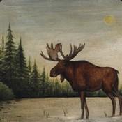 North Woods Moose II