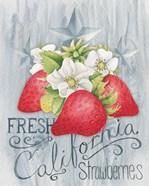 American Berries I