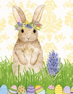 Spring Bunny II