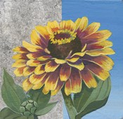 Zinnia Spice and Silver