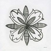 Patterns of the Amazon Icon XVI