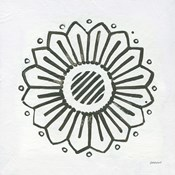 Patterns of the Amazon Icon IX