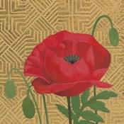 Poppy with Pattern