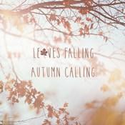 Autumn Calling I