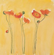 Cadmium Orange Poppies