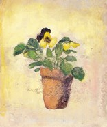 Pansy Giant Fancy