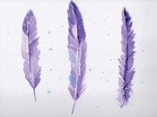 Lavender Feathers