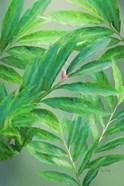 Tropical Leaves IV