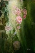 Evening Light on Roses II