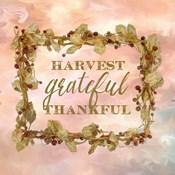 Harvest, Grateful, Thankful