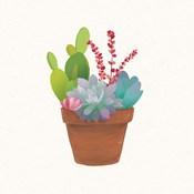 Succulent Pot III