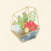 Succulent Terrarium IV