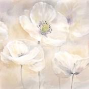 White Poppies I