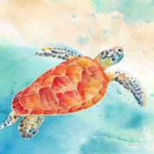 Sea Splash Sea Turtle