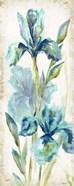 Watercolor Iris Panel REV I